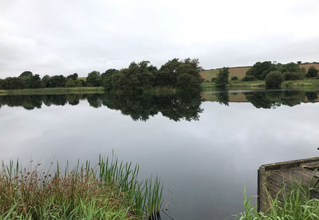 Farletonview-Fishery-Lake-View