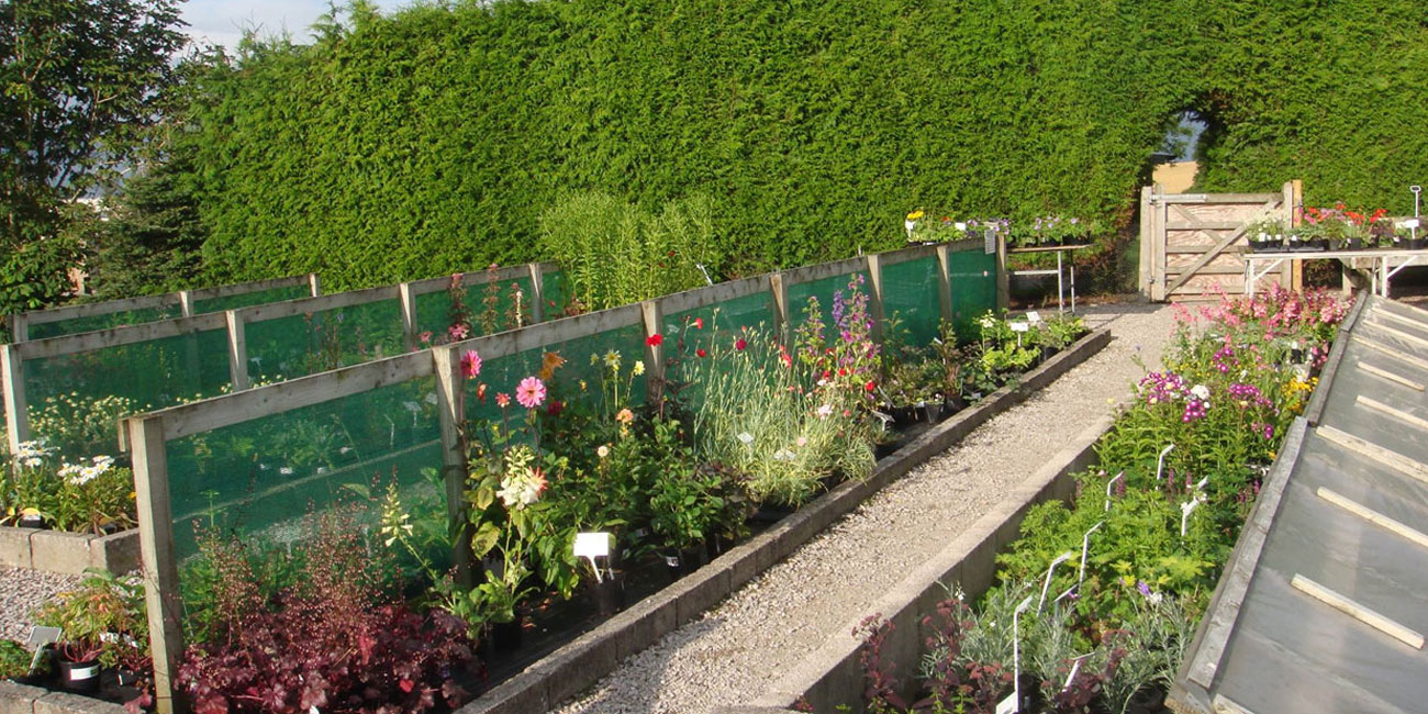 Farleton Horticultural