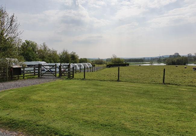 Farletonview-Caravan-Site-Sheep-and-Lake